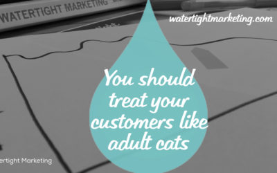 Why you should treat your customers like adult cats