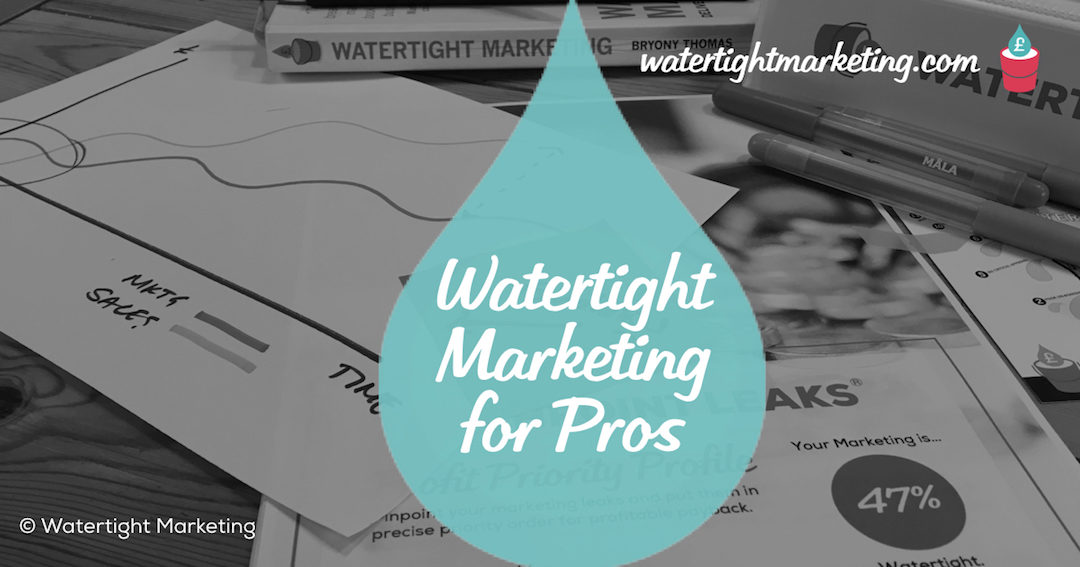 9 things a professional marketer will get from reading Watertight Marketing