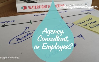 Agency, consultant or employee?