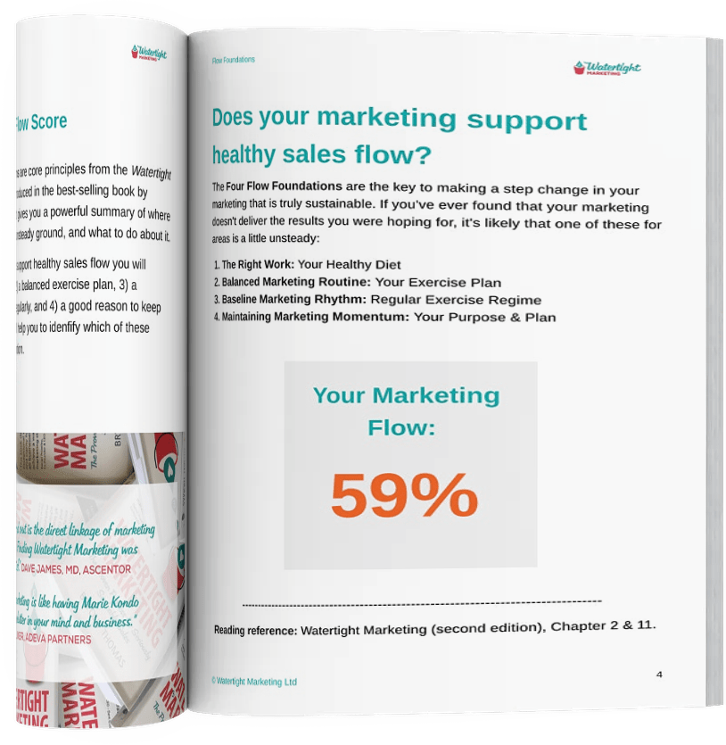 Marketing Flow Score