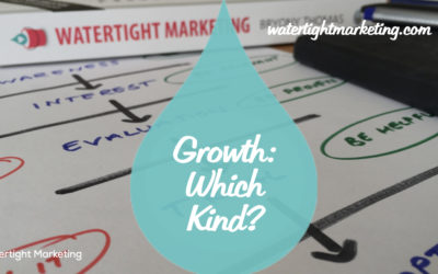Growth: Do you want lifetime value, margin or volume?